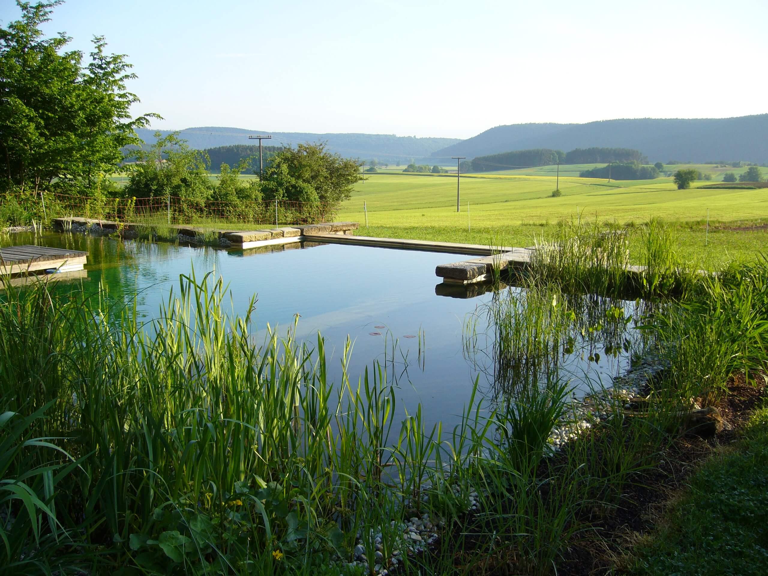 Schwimmteiche & Pools – Wellness in ursprünglicher Natur.