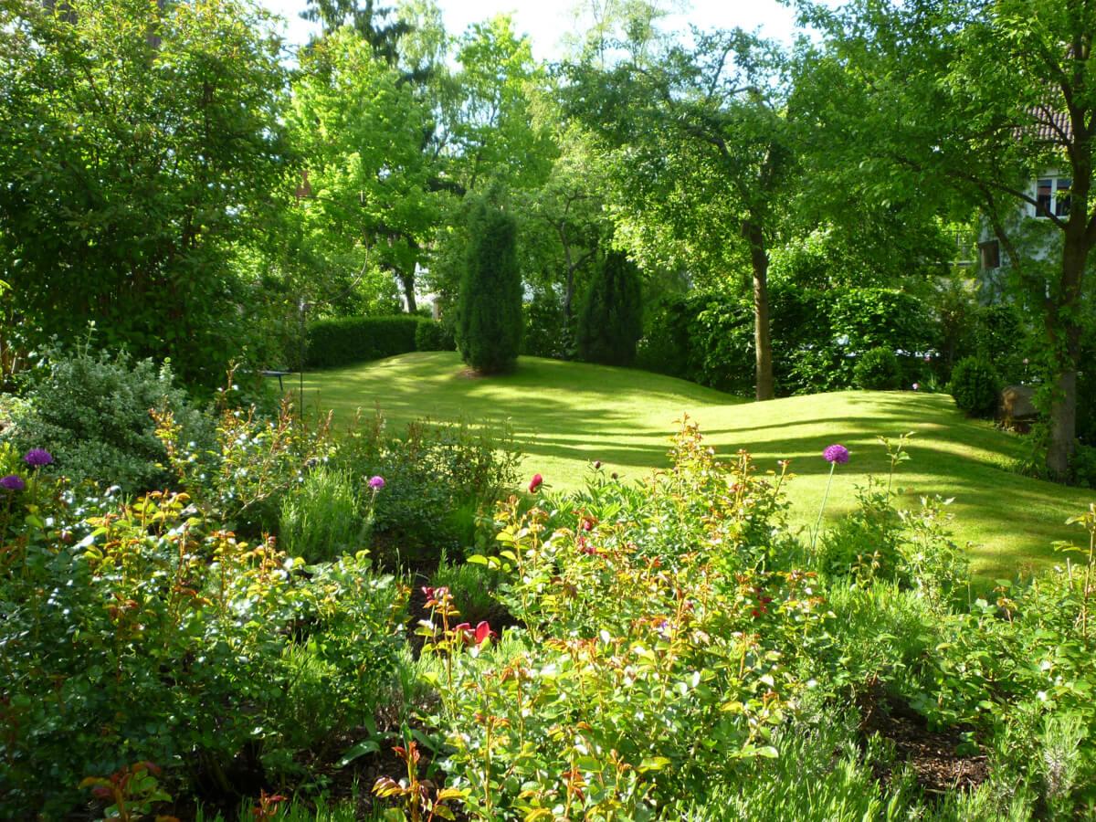 Rasen – saftiges Grün für die Sinne.