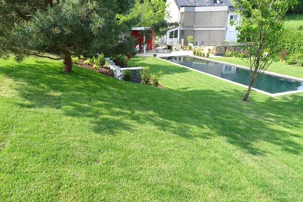 Rasenpflegekonzepte – die Pflege für Ihren grünen Teppich.
